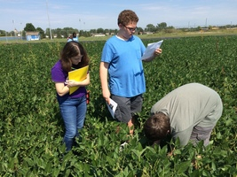 Tipton High School Introduction To Agriculture Class Soybean Yield Prediction at the THS FFA Plot